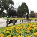 Saheli Cycling